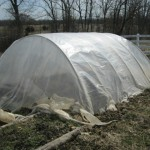 PVC hoop house- clods for ends