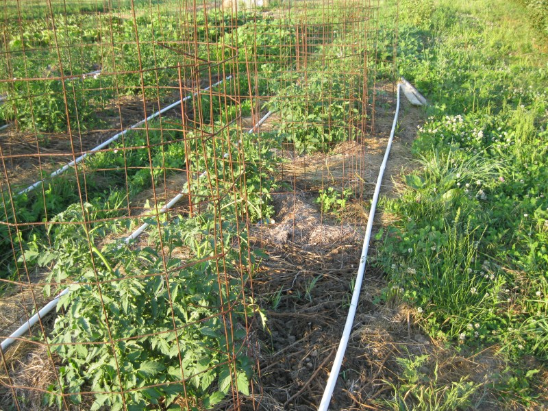 Homemade Pvc Irrigation System